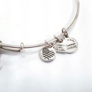 Alex and Ani Jewelry - Alex & Ani Otter Silver Tone Bracelet 2016